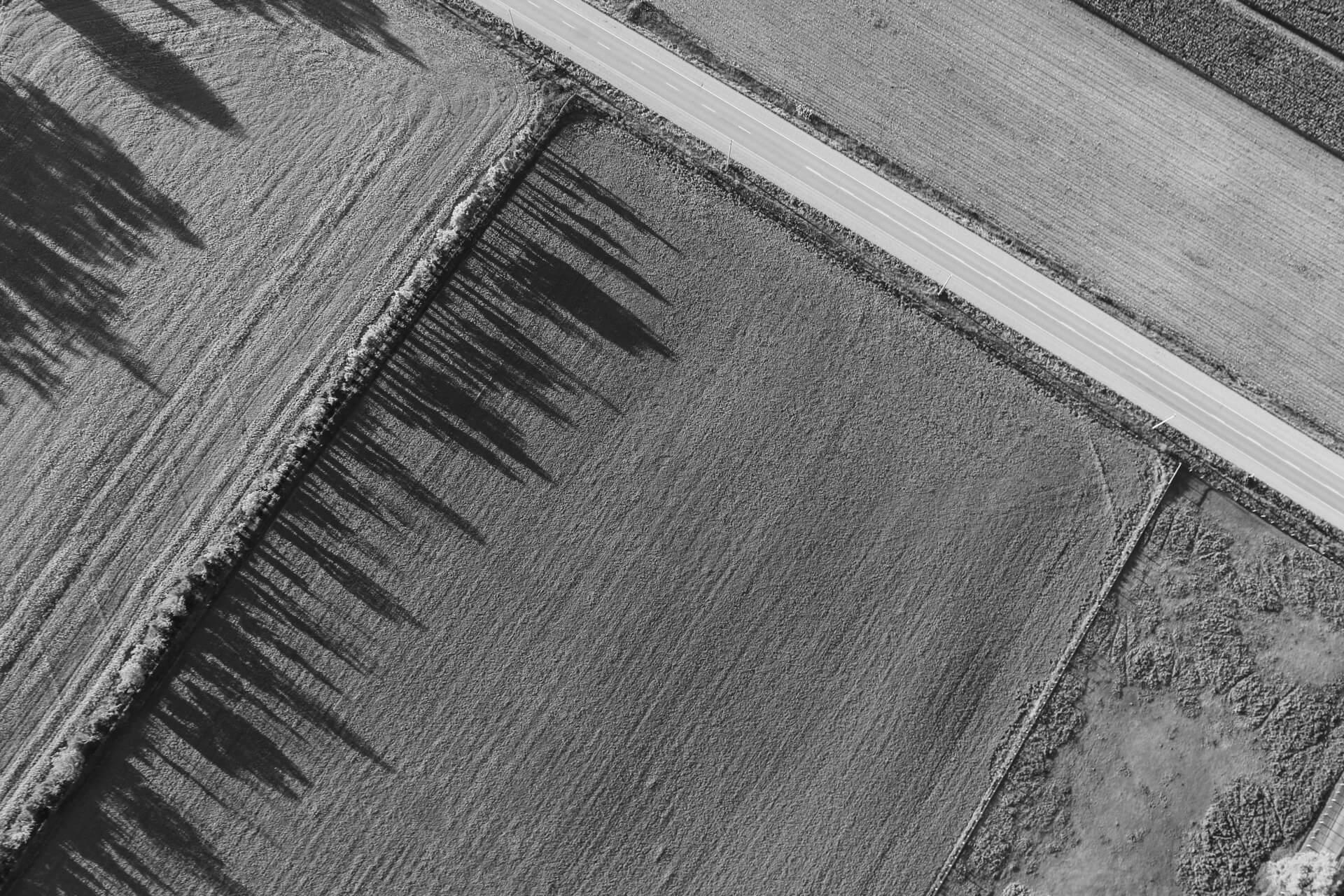 bezetting ter bede landbouwgrond